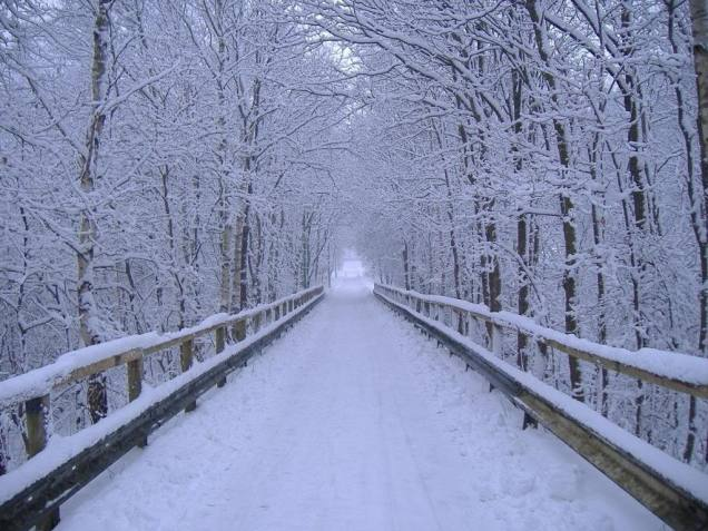 winter_scene_30